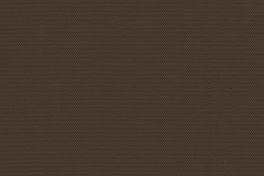 Cocoa-Cocoa_1