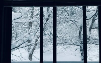 Best Window Coverings to Keep Heat in Your Home This Winter 2021